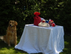 green sustainable kids' birthday parties Victoria BC retriever guards gifts in cloth bags