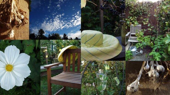 blog sept 20 2013 fall2